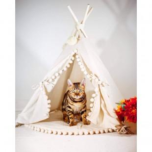 چادر سرخپوستی گربه