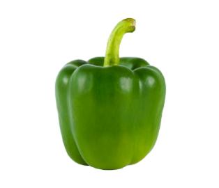 فلفل دلمه ای سبز (3 عدد)