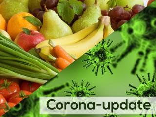 تقویت سیستم ایمنی بدن با میوه