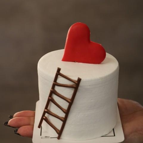 مینی دسری نردبان عشق