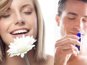 خواص رایحه درمانی ( آروماتراپی )؛ از افزایش میلجنسی تا کاهشوزن !