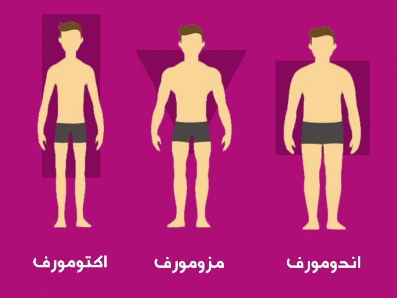 انواع تیپهای بدنی و رژیم غذایی