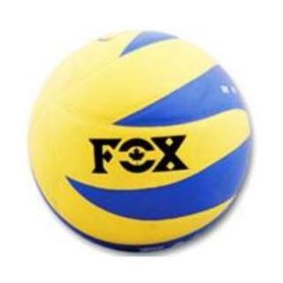 توپ والیبال فوکس طرح فرانسه